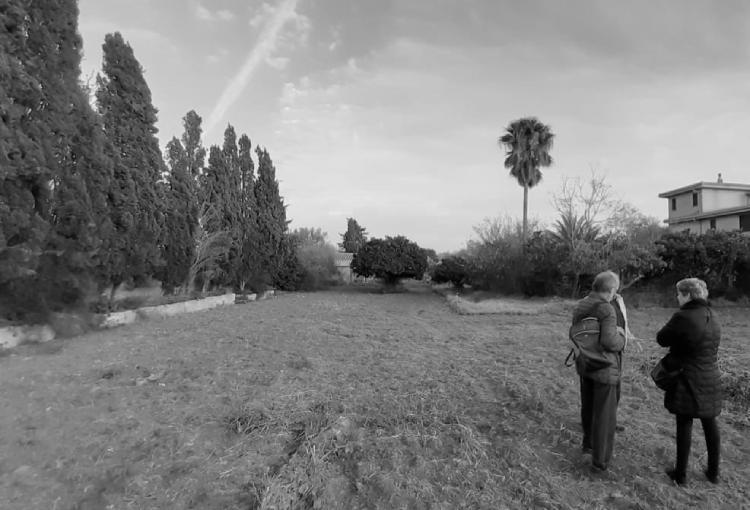 El futur parc agrari a s'Horta de Dalt