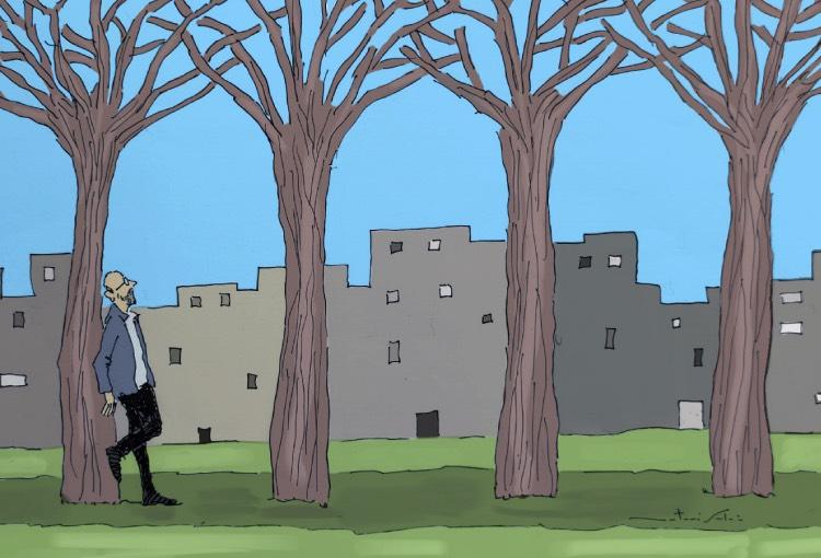 El azufaifo de Isabel Nuñez y otros árboles del mundo